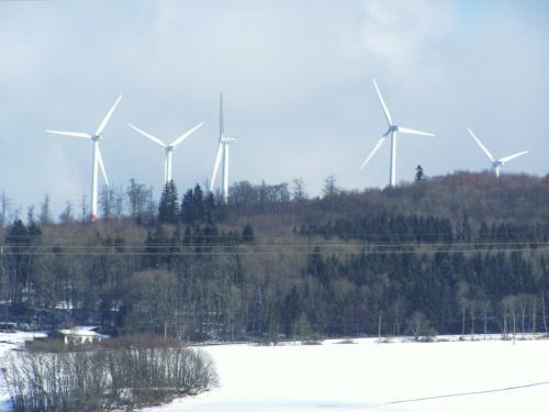 """Drugi dzien powrotu zimy. """"Windpark"""" #krajobrazy #zima #snieg"""