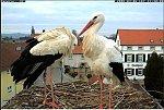 http://images34.fotosik.pl/168/d0e373e433340347m.jpg