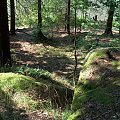jezioro Wrzeszczyńskie i okolice #ZaporaWodna #krajobraz #ElektrowniaWodna #pilchowice #JeleniaGóra #tama #bóbr #natura #przyroda #rzeka #jezioro #las