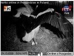 http://images34.fotosik.pl/212/9c480a0336a4c063m.jpg