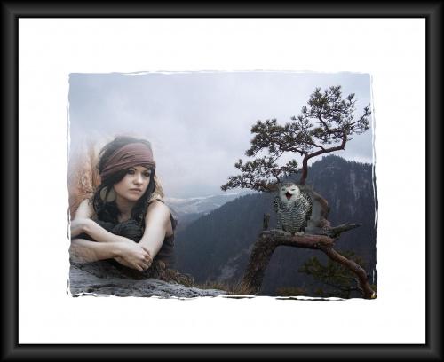 Zdjecie udostępnione mi przez Ciach52, było tak piękne, ze postanowiłam je wykorzystac do swojej pracy! #PSP #grafika #dziewczyna #sowa #góry