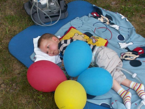 Precel pilnuje balonów