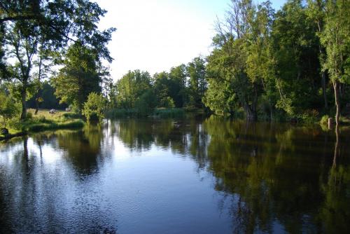 #rzeka #wakacje #woda