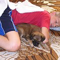Psotka - ( suczka 2 m-ce) 17.07.2008 #piesek #szczeniak #suczka #spacer #zwierzęta #NasiUlubieńcy #PrzyjacielCzłowieka #OpiekaNadZwierzętami