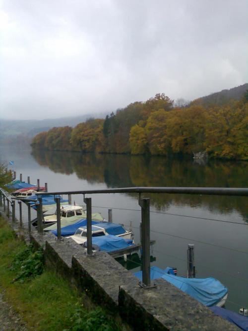 Nad Renem.... #krajobrazy #rzeka #podróże