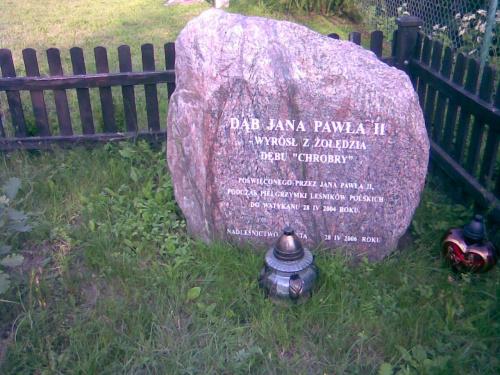 Bażyny k. Ornety - głaz pamiątkowy obok dębu Jana Pawła II