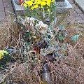 Pamięć o zmarłym dziecku... #cmentarz #zaduszki #znicze #dzieci