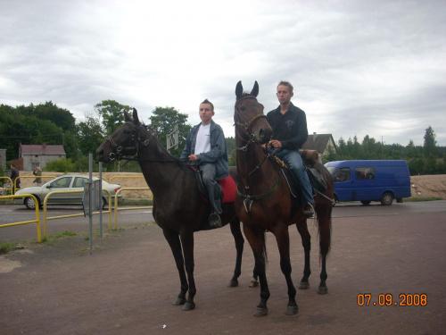 Konie na trasie korowodu do�ynkowego.
