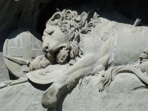 Najsmutniejszy lew jakiegokolwiek widziałam...