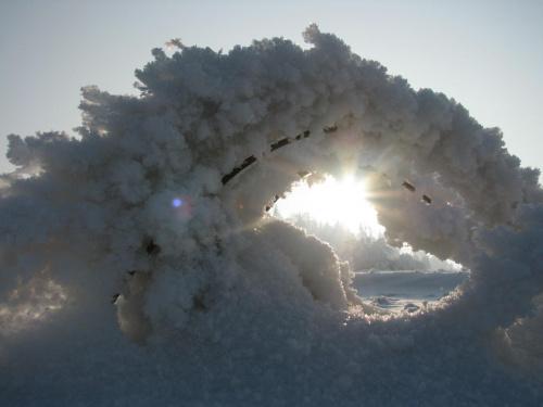 Otulona #Krajobraz #mróz #Przyroda #Śnieg #Zima