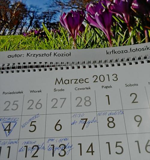 Brawo dla Fotosika, brawo dla jego Użytkowników, których zdjęcia znalazły się w kalendarzu. Ten kalendarz, to jet COŚ. W tym miesiącu towarzyszą nam krokusy Krzysztofa :) :)