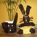 moje króliczki #królik